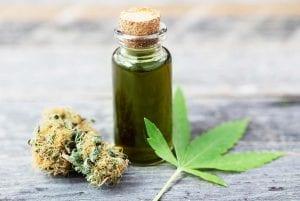 cbd magic weed